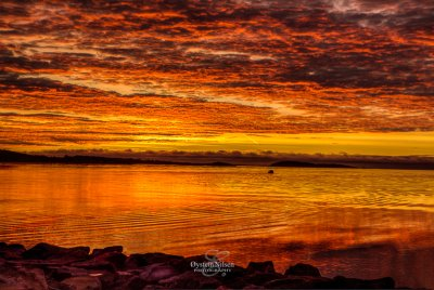 Pre-sunrise that make the clouds all colors of yellow and red, reflected in the ocean at Tangen Ytterst, Kristiansand